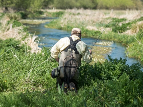 Dorset Chalkstream Club